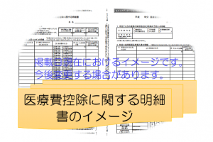 h29_医療費控除に関する明細書のイメージ画像