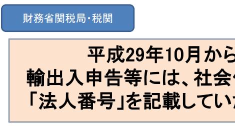 輸出入申告等法人番号_11