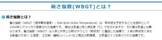暑さ指数(WBGT)_11