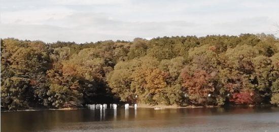 宮沢湖-13